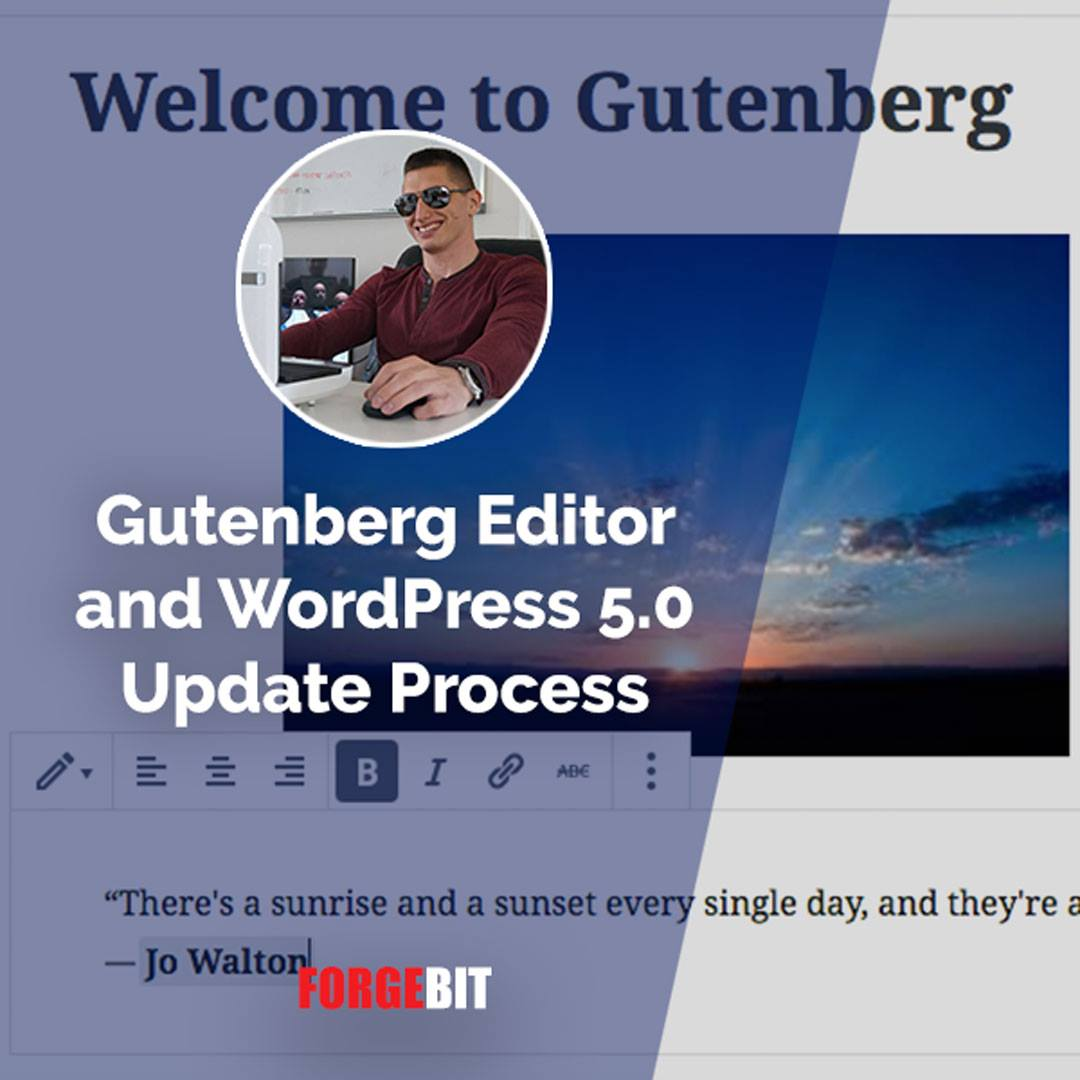 Gutenberg Editor and WordPress 5.0 Update Process